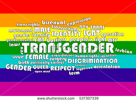 stock-photo-word-cloud-made-of-words-regarding-trans-gender-topics-on-rainbow-colors-flag-537307339